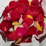thumbs_Rose-petal-basket-close-up